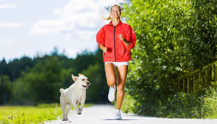 joggen mit hund