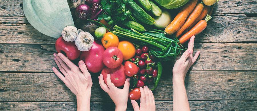 5e73c69150f910 Bio Online Shops in Österreich – Bio Lebensmittel online bestellen